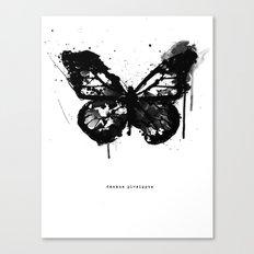 Black Monarch Canvas Print