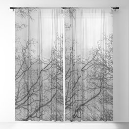 Scary black and white trees Sheer Curtain