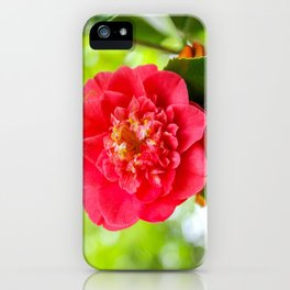 The Lost Gardens of Heligan - Red Camellia iPhone Case