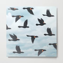 red-winged blackbirds and blue sky Metal Print