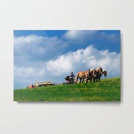 Amish farmer plowing Metal Print