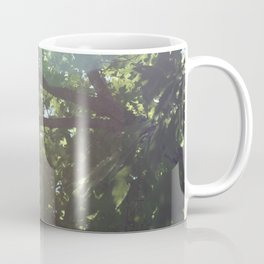 warm rays Coffee Mug