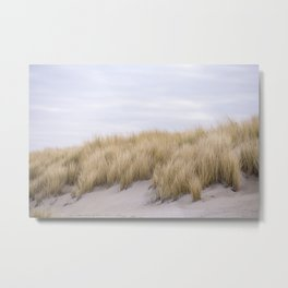 Field of grass growing in the sand Metal Print