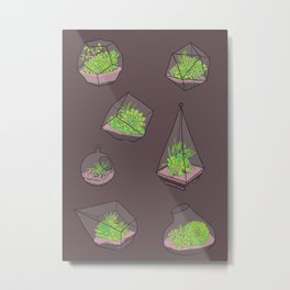 Terrariums Metal Print