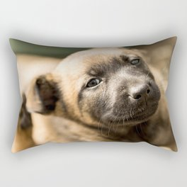 Who will play with me next? Rectangular Pillow