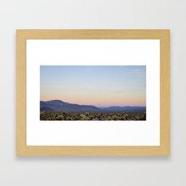 Joshua Tree Cholla Cactus Sunset Framed Art Print