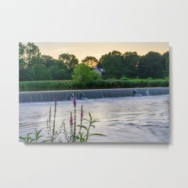 Wehr's Dam with Flowers Metal Print