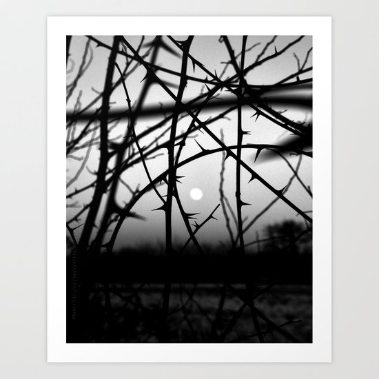Winter Moon Art Print