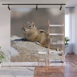 Watercolor Golden-Mantled Ground Squirrel 06, Dunraven Trail, Colorado Wall Mural