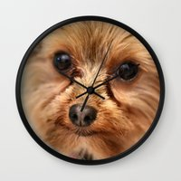 ewok Wall Clocks featuring Ewok? by IowaShots