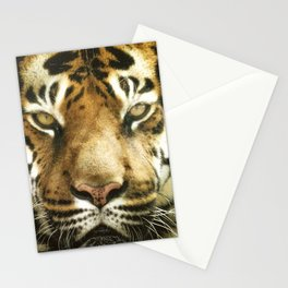Face of Tiger Stationery Cards