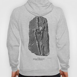 Fossil. Human Skeleton. Found in Guadaloupe Hoody