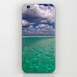 Caladesi Island iPhone Skin