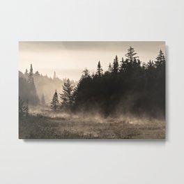 misty landscape Metal Print