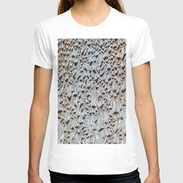 Morning condensation T-shirt