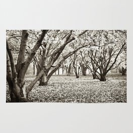 Magnolias in Black & White Rug