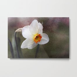 Spring came suddenly... Metal Print