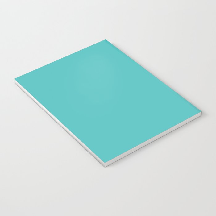Catch the falling stars Notebook