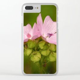 Prairie Mallow Flowers and Seed Pods Clear iPhone Case