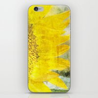 sunflower iPhone & iPod Skins featuring Sunflower by Maria Heyens