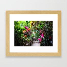 Dreamy Mexican Jungle Garden Framed Art Print