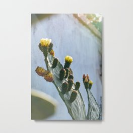 You can flower anywhere you are Metal Print