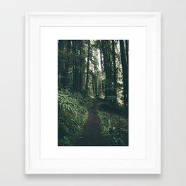 Happy Trails VII Framed Art Print