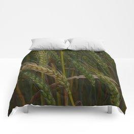 Waving Wheat Comforters