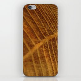 Wood Veins iPhone Skin