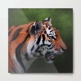 A Leader - Siberian Tiger Art Metal Print