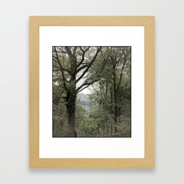 Woodland Dreams Framed Art Print