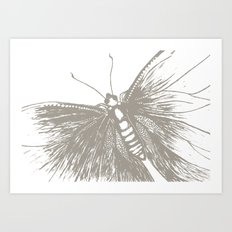 Butterfly stamp Art Print