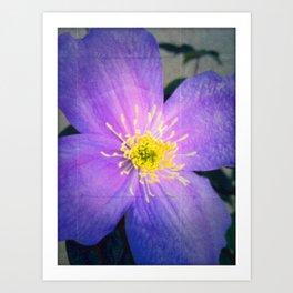 FLOWER N71 Art Print