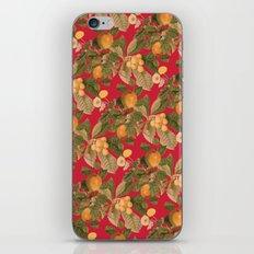 Richmond iPhone & iPod Skin
