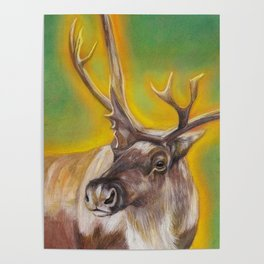 Glowing Caribou Poster