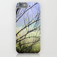Riverbirch Slim Case iPhone 6s