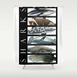 Sharks of the World Shower Curtain