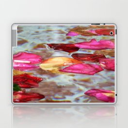 Whishing Fountain Laptop & iPad Skin