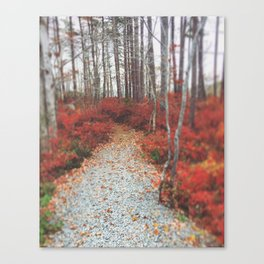 Autumn Wanderlust Canvas Print