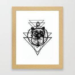 Spino Berlino - Little Cat - Black Kitten Framed Art Print