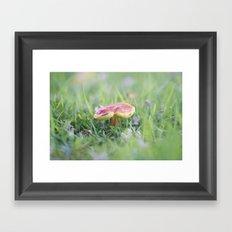 Dance of the Shroom Framed Art Print