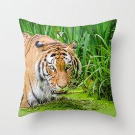 Graceful Noble Giant Beast Roaming Through Bog UHD Throw Pillow