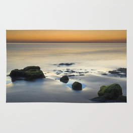 Wet sunset reflections Rug
