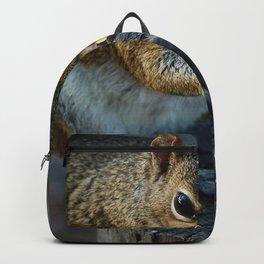 Love Peanuts Backpack