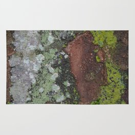 Mossy bark after rain Rug