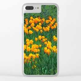 GREEN GARDEN OF YELLOW SPRING DAFFODILS Clear iPhone Case