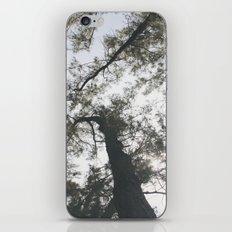 Above iPhone & iPod Skin
