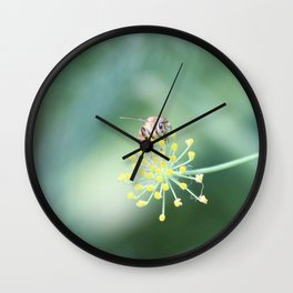 Bee and the fennel Wall Clock