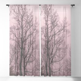 Naked trees silhouette Sheer Curtain