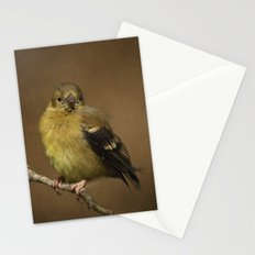 Baby Female Goldfinch Stationery Cards